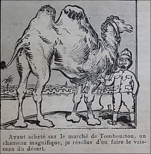 chameau 1